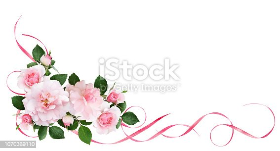 Pink rose flowers, satin ribbons and glitter confetti in a floral corner arrangement isolated on white background. Flat lay. Top view.