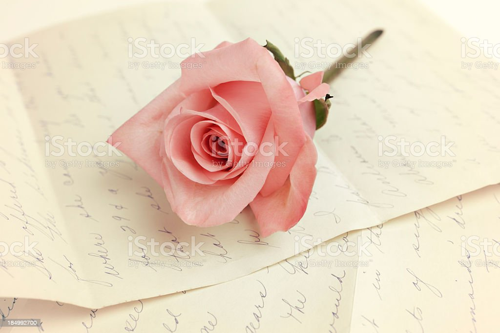 Pink rose on old letter royalty-free stock photo