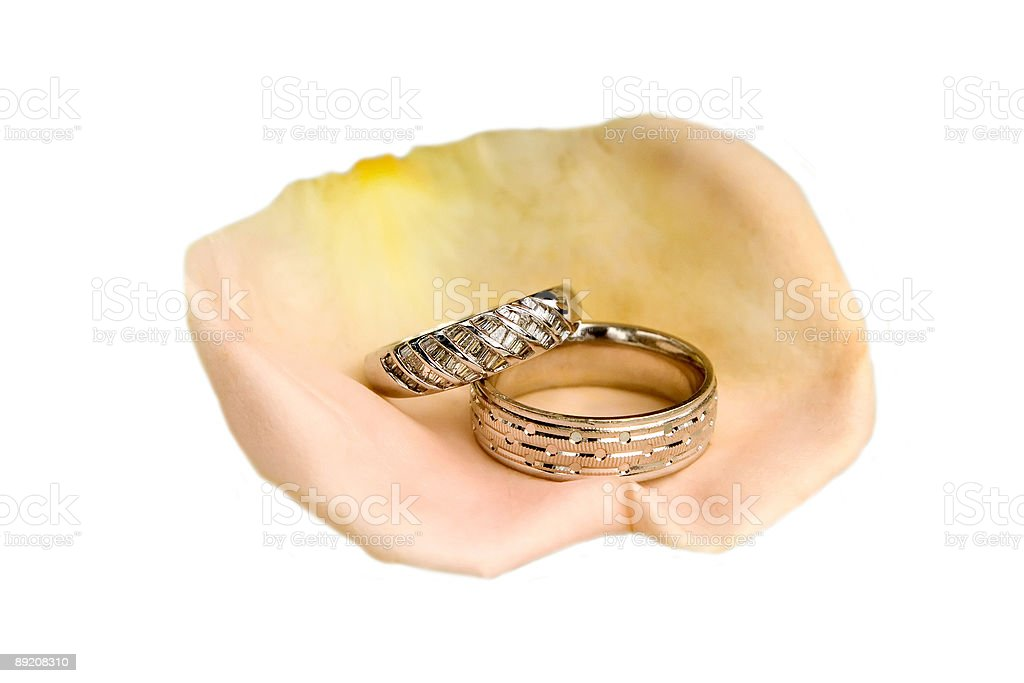 Pink Rose Pedal with Wedding Rings stock photo