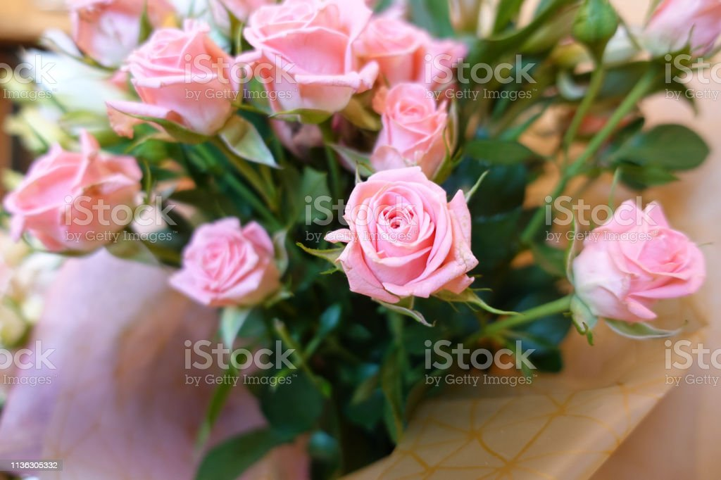 Pink roses. A bouquet of flowers close-up. Pradnichny bouquet. Present