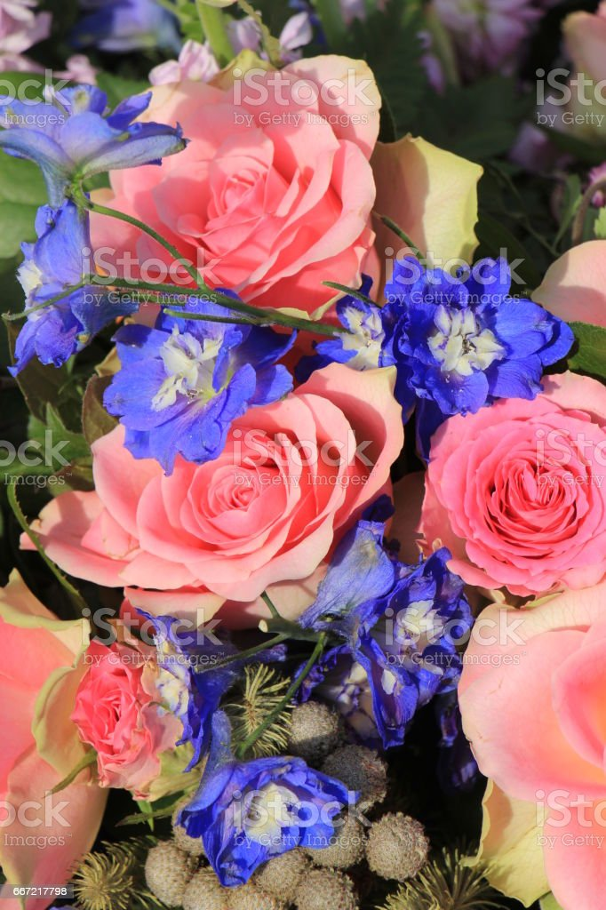 Pink roses and blue larkspur royalty-free stock photo