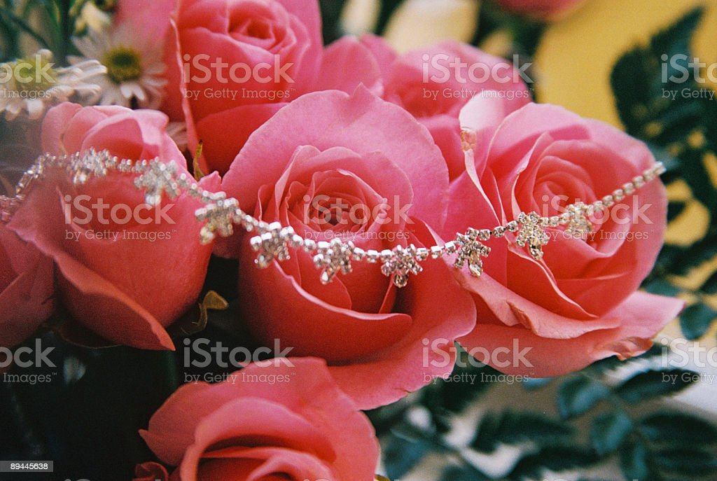 Pink Roses and Diamond Necklace royalty-free stock photo