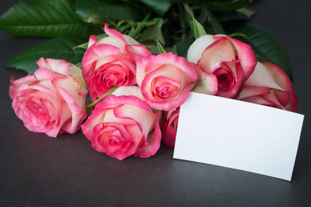 Pink roses and empty tag for greeting message picture id670247668?b=1&k=6&m=670247668&s=612x612&w=0&h=vtaiuxtipqxvzcnhodkly6kuj7c3s8gcnw72kk4lhzc=