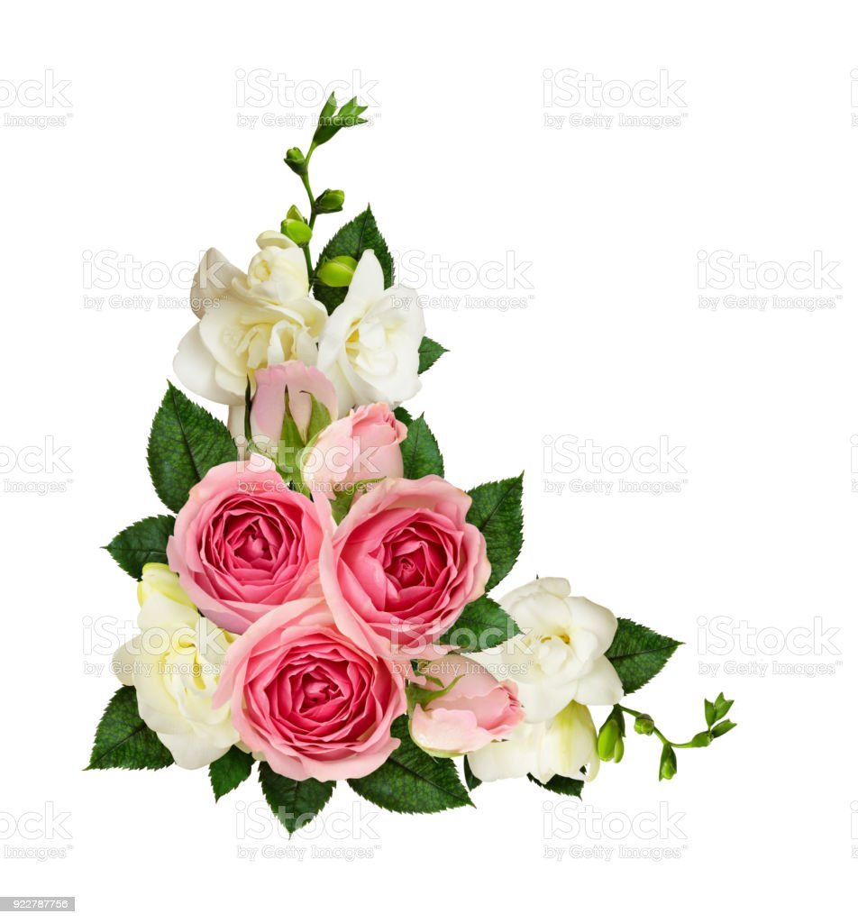 Pink roses and freesia flowers and buds in a corner arrangement pink roses and freesia flowers and buds in a corner arrangement royalty free stock photo mightylinksfo