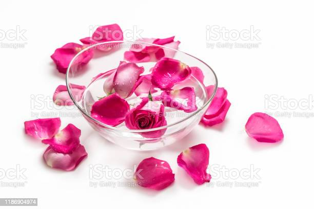 Pink roses and petals in bowl with pure water over white spa and picture id1186904974?b=1&k=6&m=1186904974&s=612x612&h=lqpt3iexba8djmy3m6ng50 rdulr3f87fmllpxmgnds=