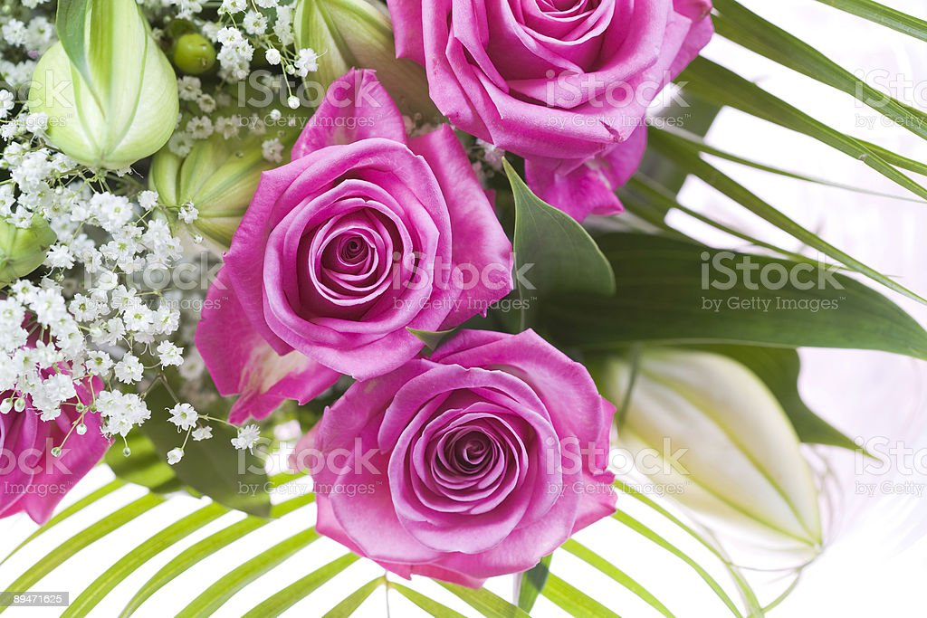 Pink Roses Bouquet royalty-free stock photo