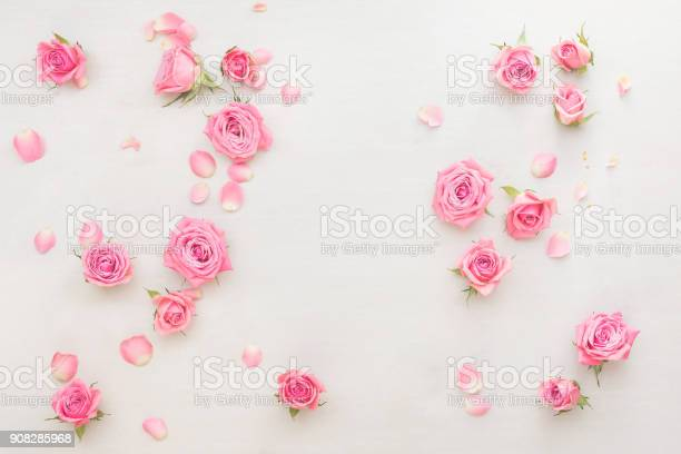 Pink roses buds and petals scattered on white background picture id908285968?b=1&k=6&m=908285968&s=612x612&h=ouookbf6 xbgpsapjfdjv5jpx ybenyachify2qflnk=