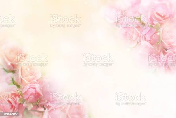 Pink roses flower border soft background for valentine picture id639445058?b=1&k=6&m=639445058&s=612x612&h=ubjpgricadaa9ibc1uncq7zc2kkblpz2vvwstsliw4q=