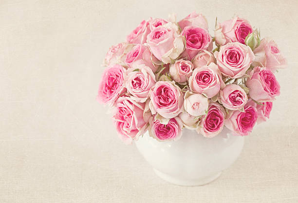 Pink roses in a cup picture id177382456?b=1&k=6&m=177382456&s=612x612&w=0&h=dnodqoppilfoz6umfmdzyxjj99yyx1umqwmb zujc3g=
