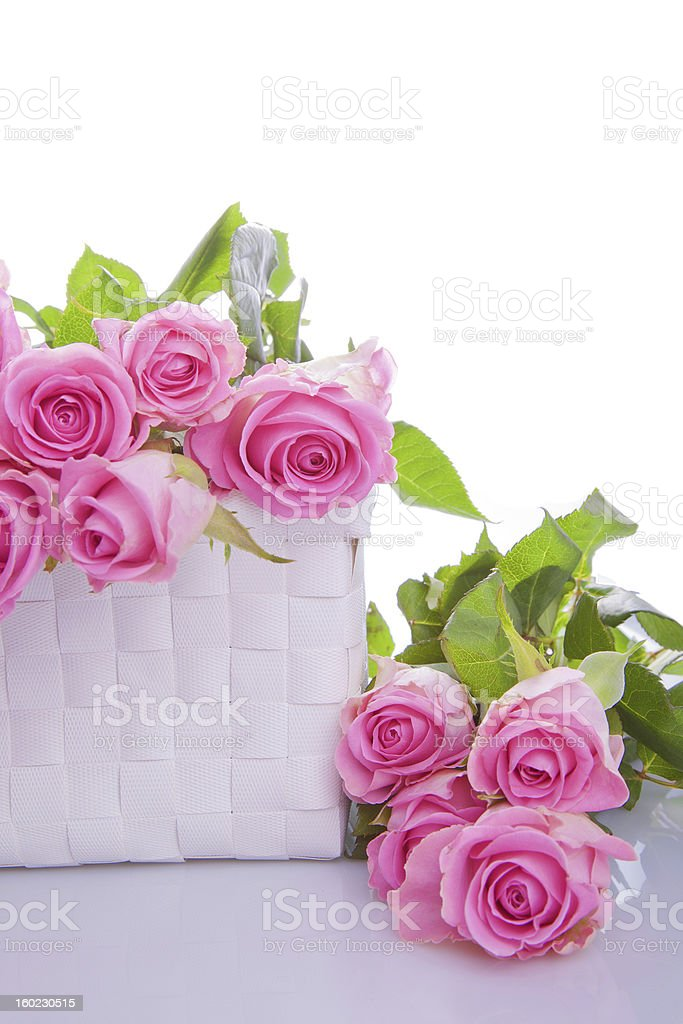 pink roses in a gift box royalty-free stock photo