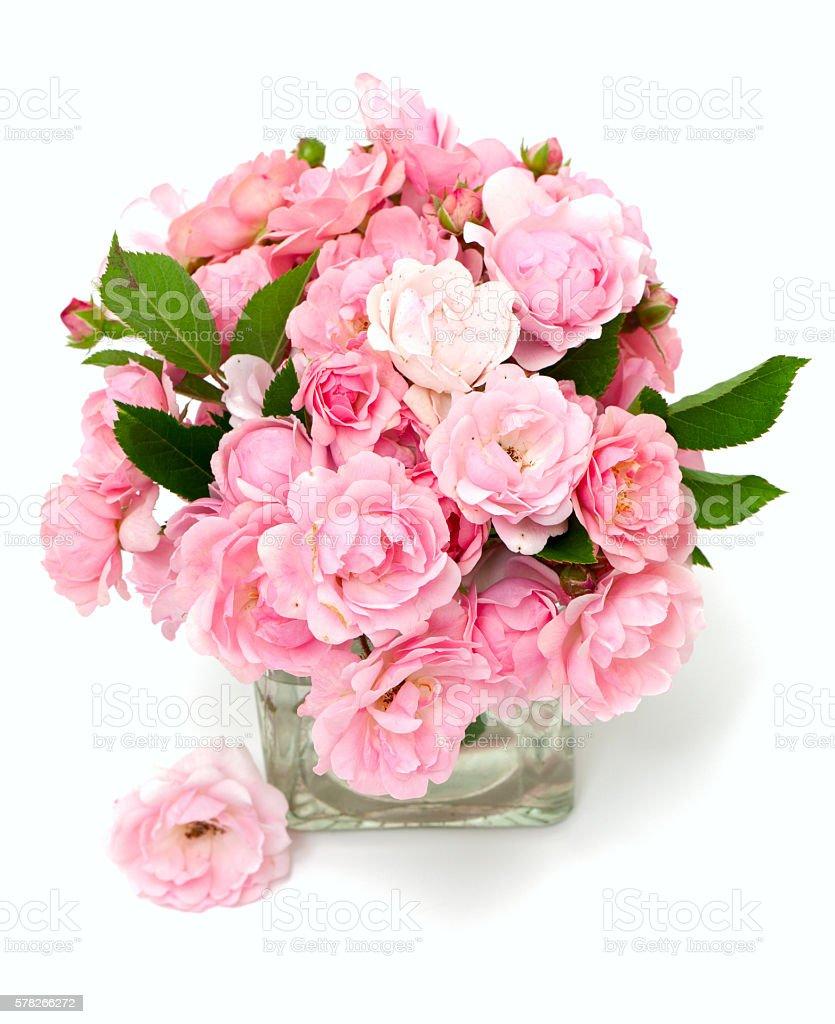 Pink Roses In A Glass Vase Stock Fotografie Und Mehr Bilder Von