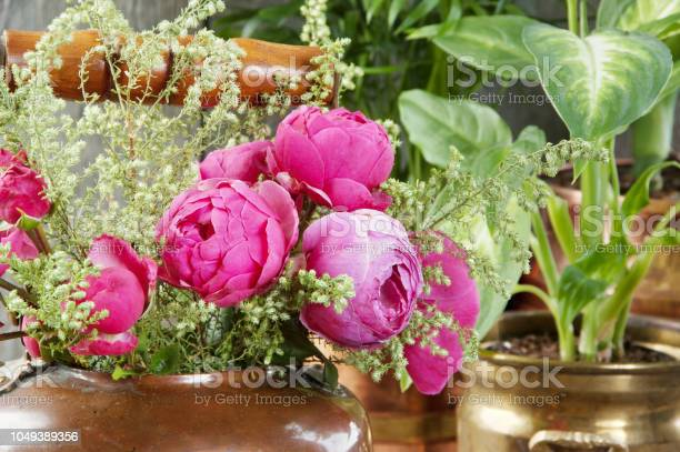 Pink roses in old copper brass kettle and green plants picture id1049389356?b=1&k=6&m=1049389356&s=612x612&h=qk08i mbyyhheky9onvimwwfdswd uy6tagdjabeodg=