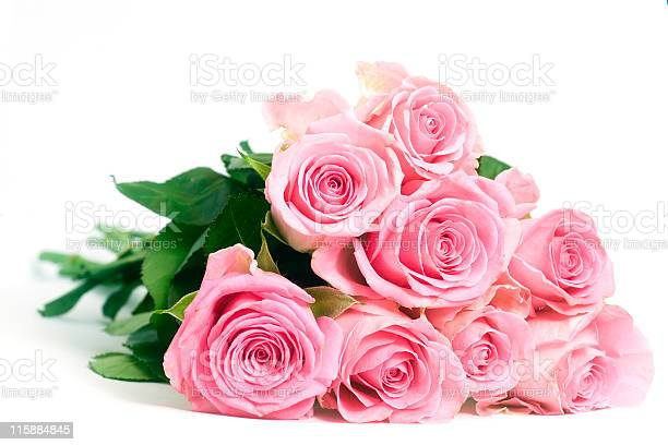 Pink roses isolated on a white background picture id115884845?b=1&k=6&m=115884845&s=612x612&h=lws oyesitw0kmkoebxooizbyuhzfjncemyq9vf0vlg=