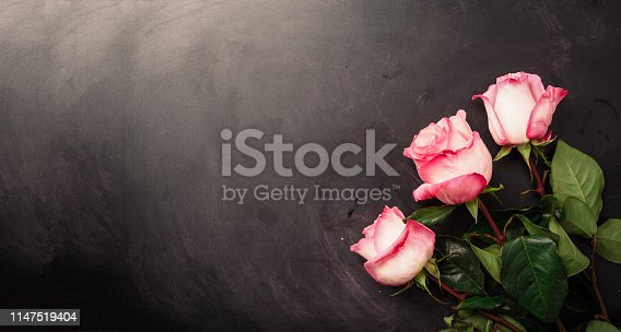 Pink roses on black chalkboard. Happy Women's Day. Valentine's Day concept. Present for her.