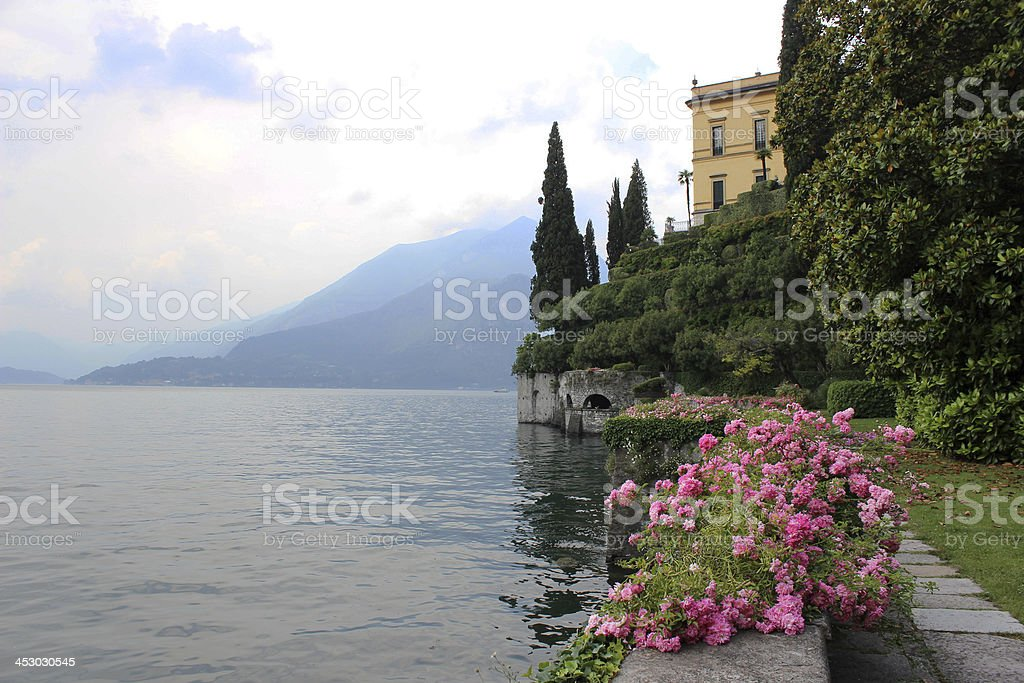 Pink roses on Wall overlooking the Mediterranean in Varenna, Italy stock photo