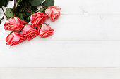 istock Pink roses on white wooden background. Floral frame, Mothers day, st. Valentines day roses, Bouquet of pink roses, Floral background image with copy space for text 1193507479