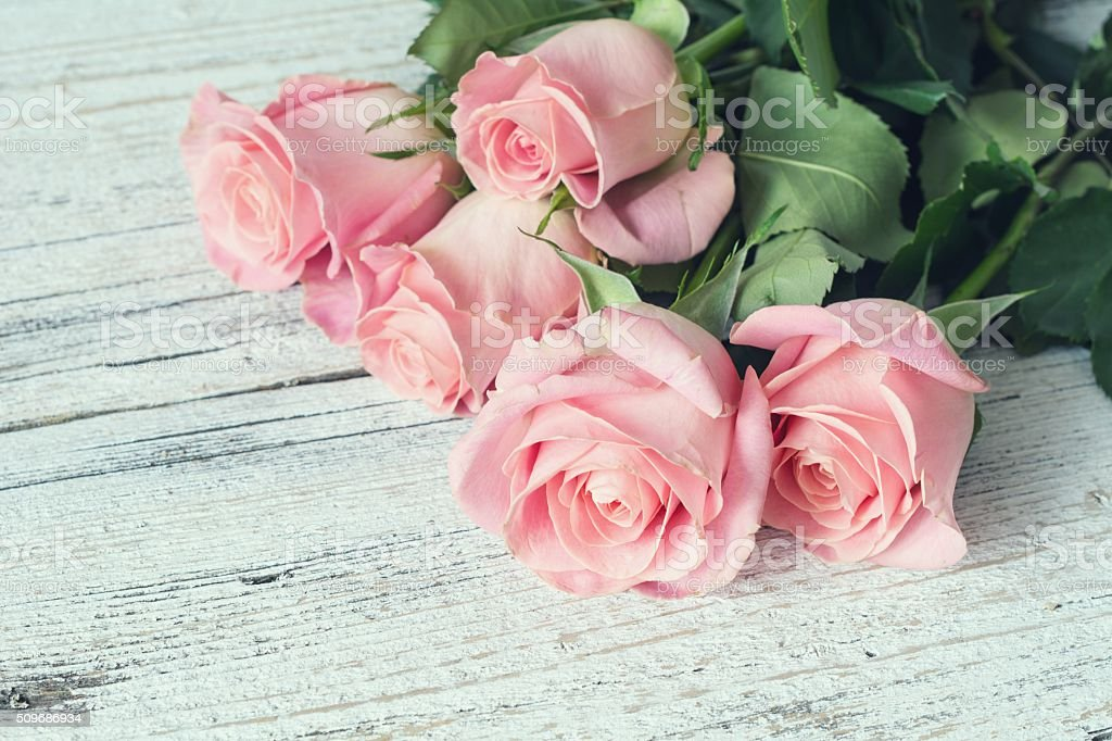 Pink roses on white wooden background stock photo