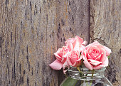 istock Pink roses 526960427