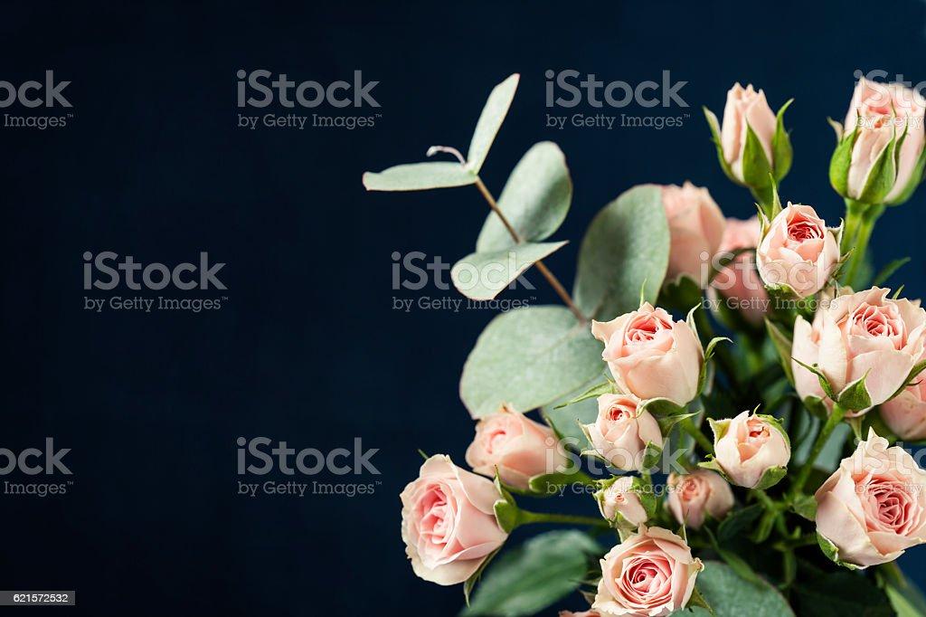 Rose roses  photo libre de droits
