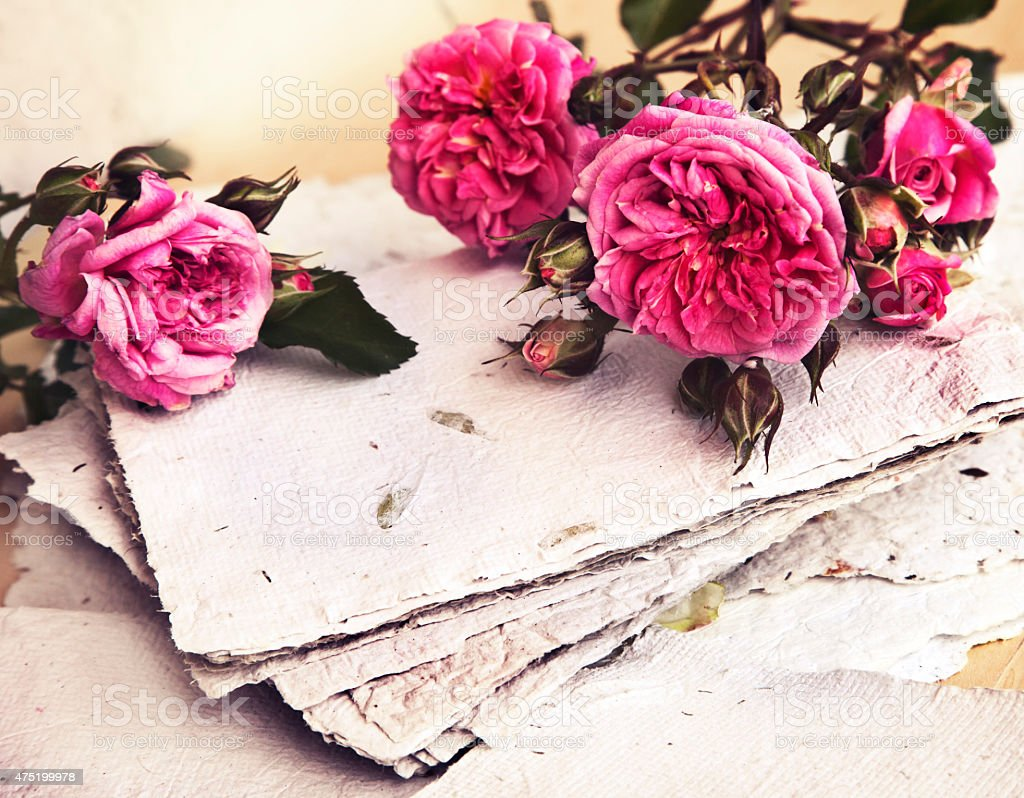 pink roses, red heart, handmade paper, stock photo
