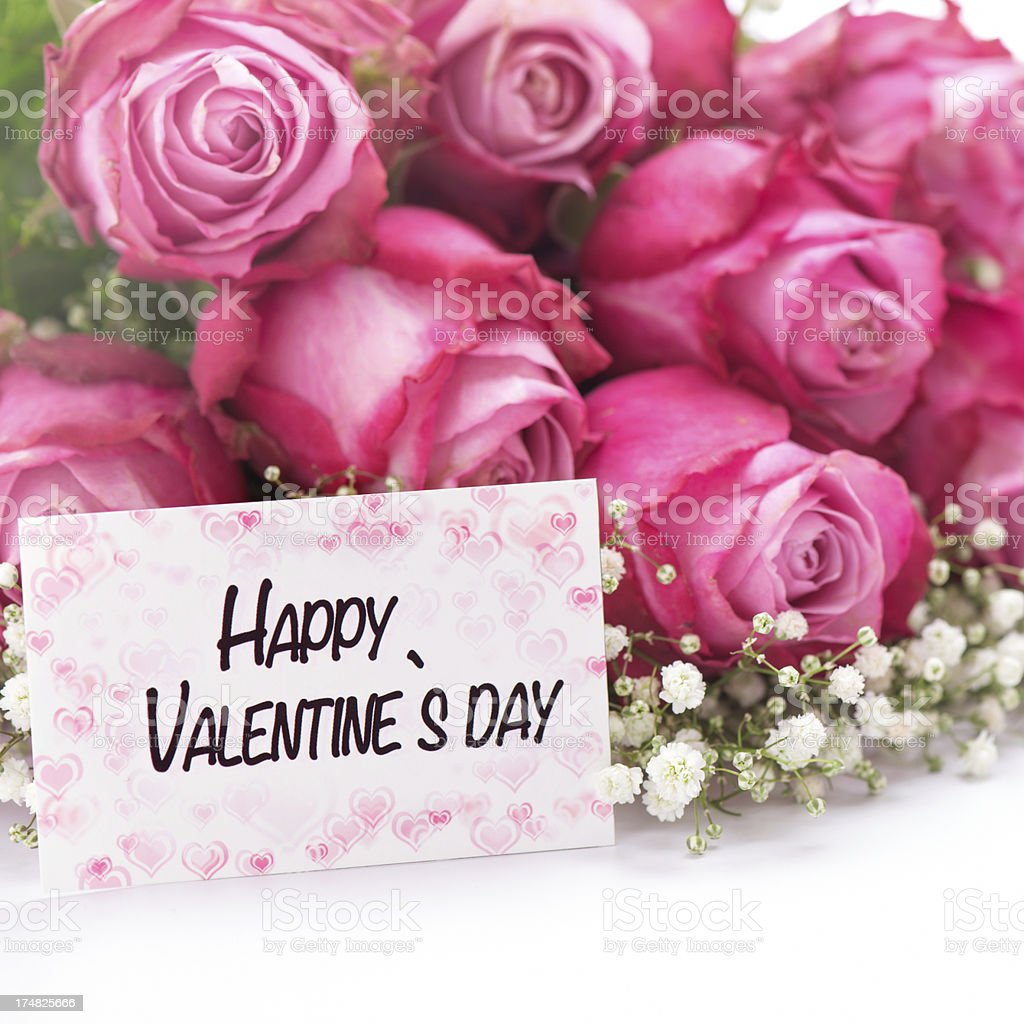 Pink Roses with a valentines day card royalty-free stock photo