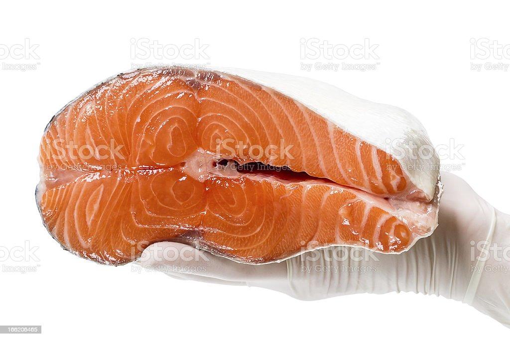 Pink salmon royalty-free stock photo