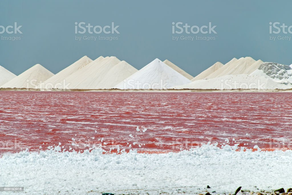 Pink salt ponds of Bonaire stock photo