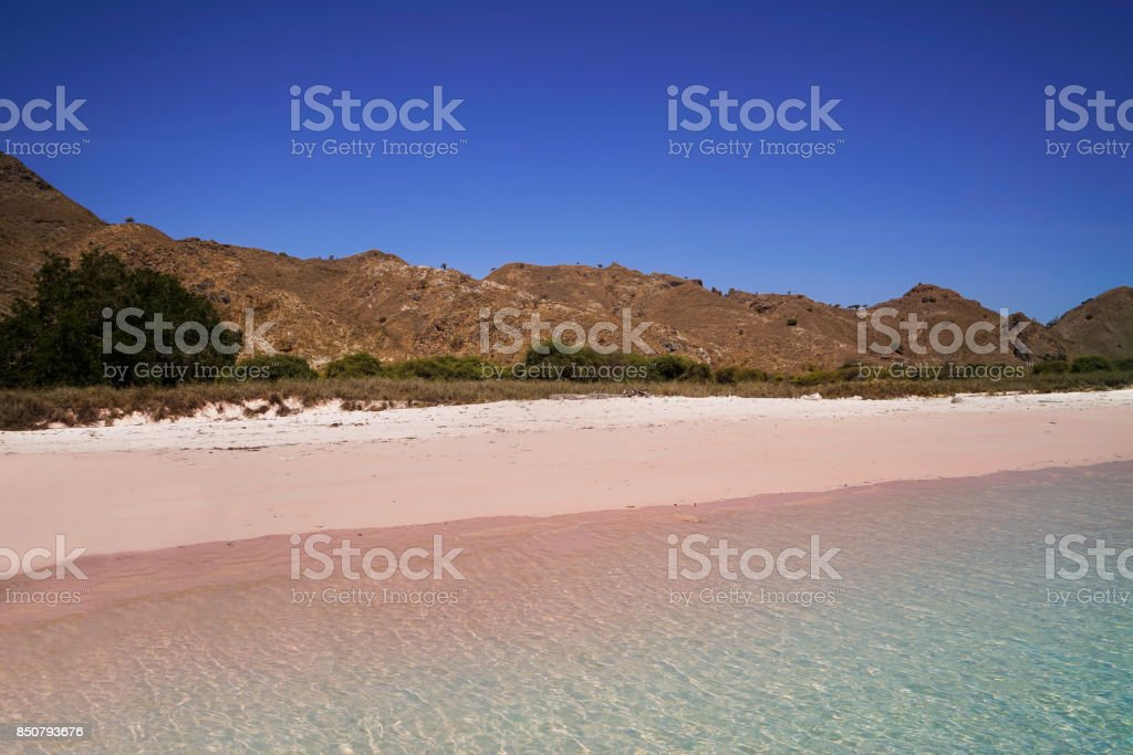 Pink sand beach in Flores, Indonesia. stock photo