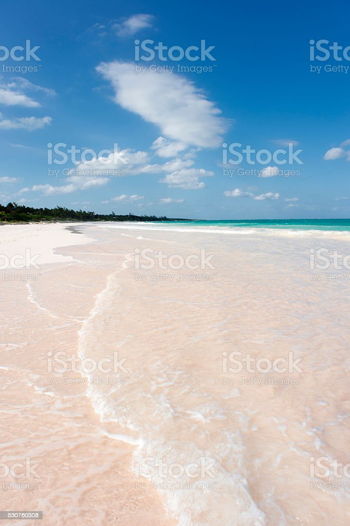 pink sands stock photo more pictures of bahamas istock