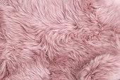 ピンクの羊の毛皮の天然シープスキン背景テクスチャ