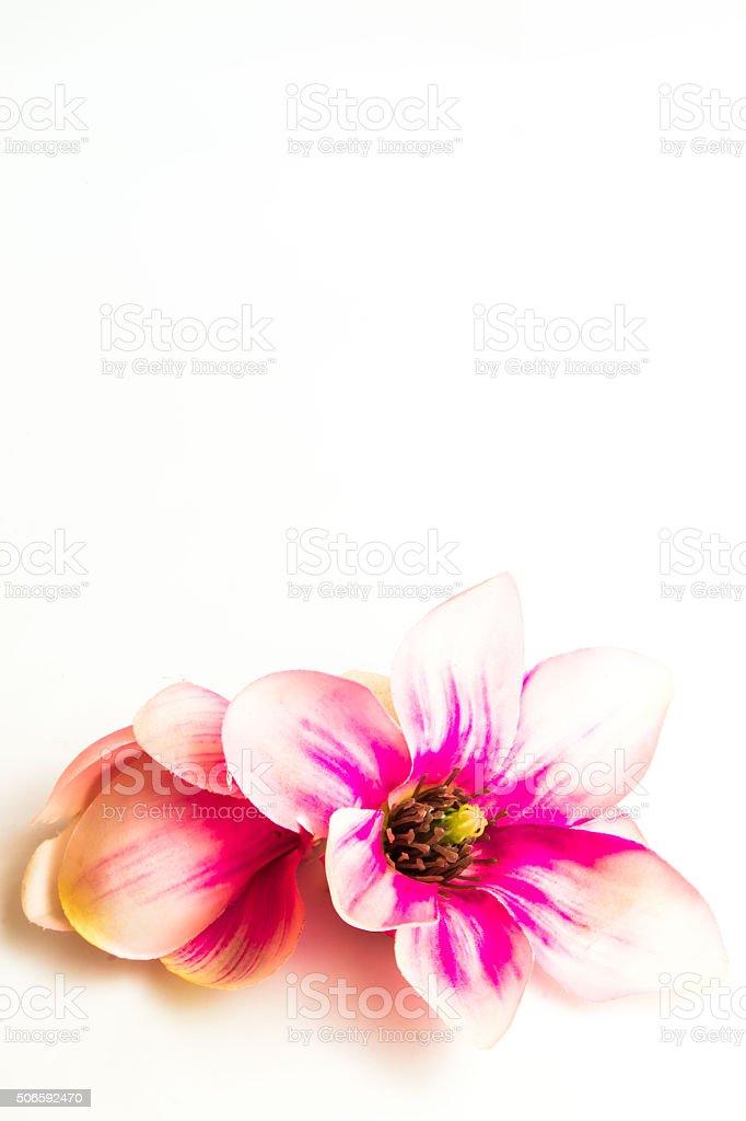 Sfondo Di Fiori Rosa Centro Benessere Fotografie Stock E Altre Immagini Di Bellezza Istock