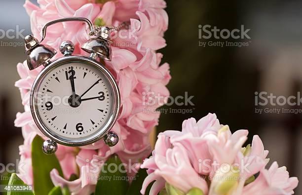 Pink spring picture id481083949?b=1&k=6&m=481083949&s=612x612&h=r60ni qbx4sa8mtnt elzxtgzhjfgyaidxf29jlu3i8=