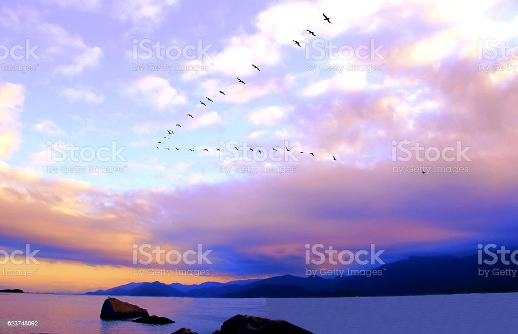 Pink sunset on southern Brazil. stock photo