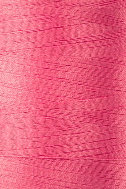 Rosa de rosca - foto de stock