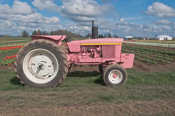 Pink Traktor – Foto