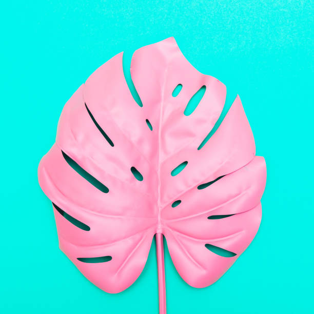 pink tropical and palm leaf - vaporwave foto e immagini stock