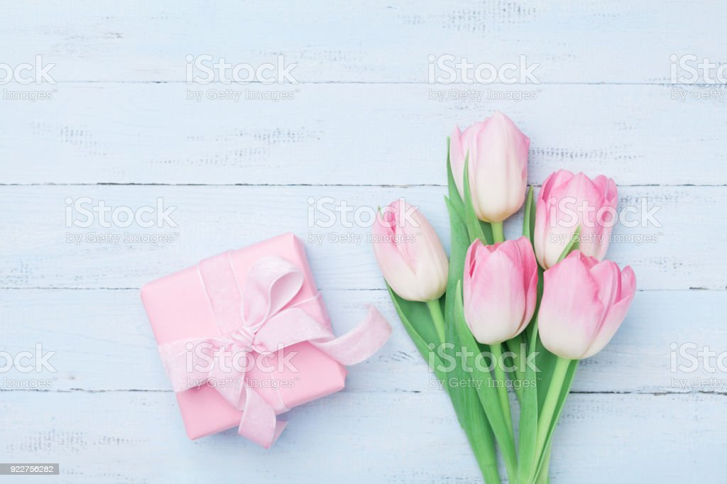 Pink tulip flowers and gift or present box on blue wooden table top...