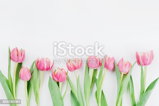 659293084 istock photo Pink tulip flowers for spring background top view in flat lay style. Womans or Mothers Day greeting card. 659293084