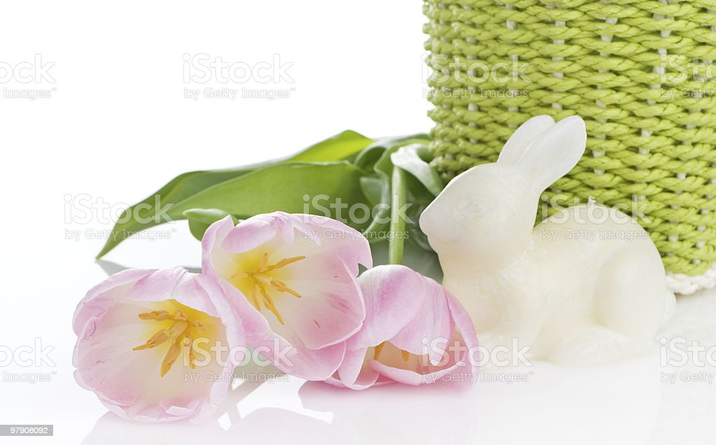 Pink Tulips And White Bunny royalty-free stock photo
