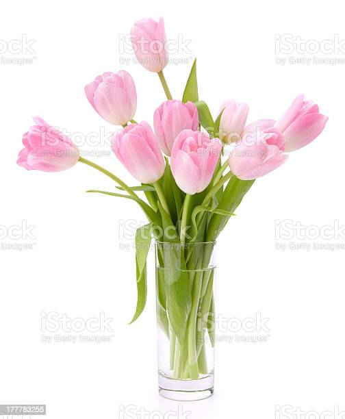 Pink tulips bouquet in vase picture id177783255?b=1&k=6&m=177783255&s=612x612&h=gpy3avg f6lrnhjbhsssqz6ntdekyylk4kanbzvo9mg=
