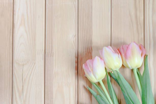 粉色鬱金香束上木制背景圖像檔