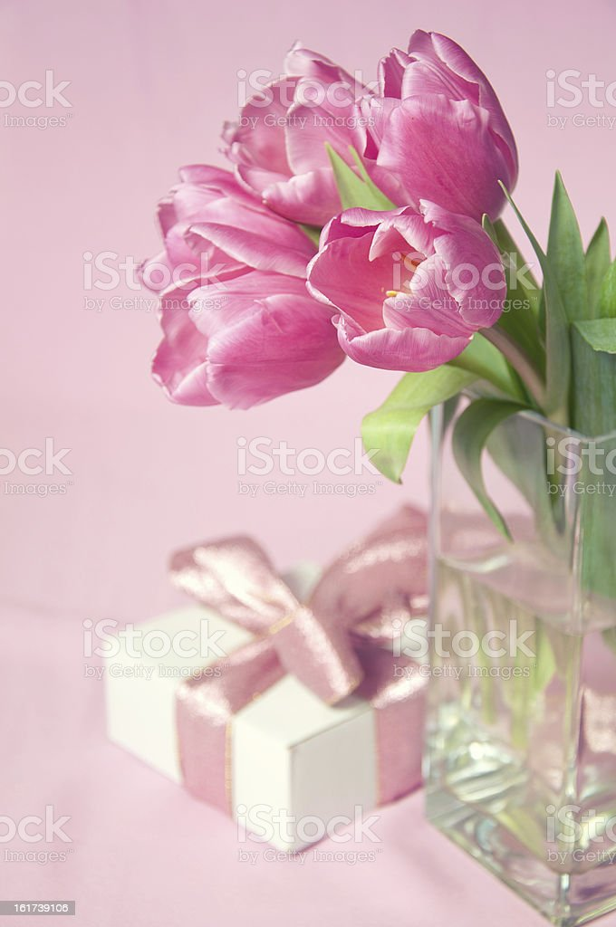 Pink tulips in vase with the gift box royalty-free stock photo
