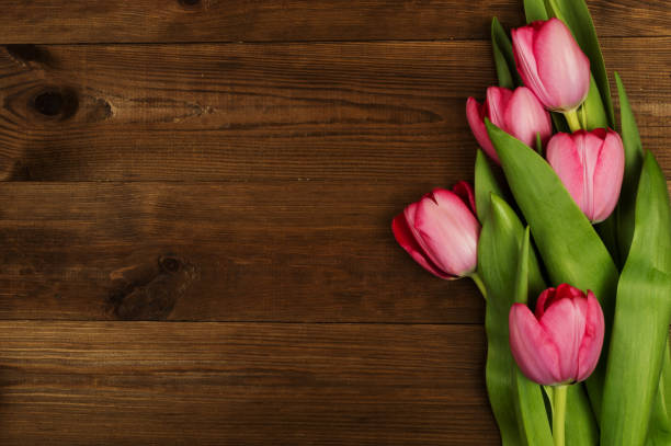 Pink tulips on a wooden background. Mother's Day. Spring flowers