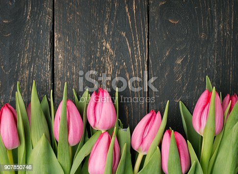 istock Pink tulips on a wooden background. 907850746