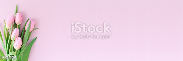istock Pink tulips on the pink background. Flat lay, top view.  Valentines background. 910575056
