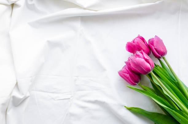 Pink tulips on white bed honeymoon stock photo