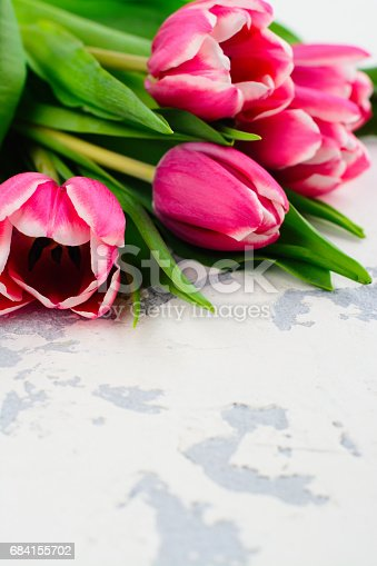 921112244 istock photo Pink tulips on white table 684155702