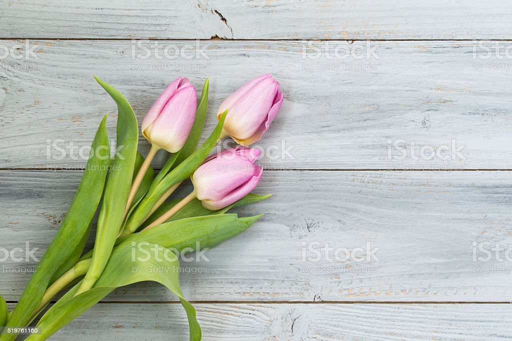 Pink tulips on wooden background, top view with copy space stock photo