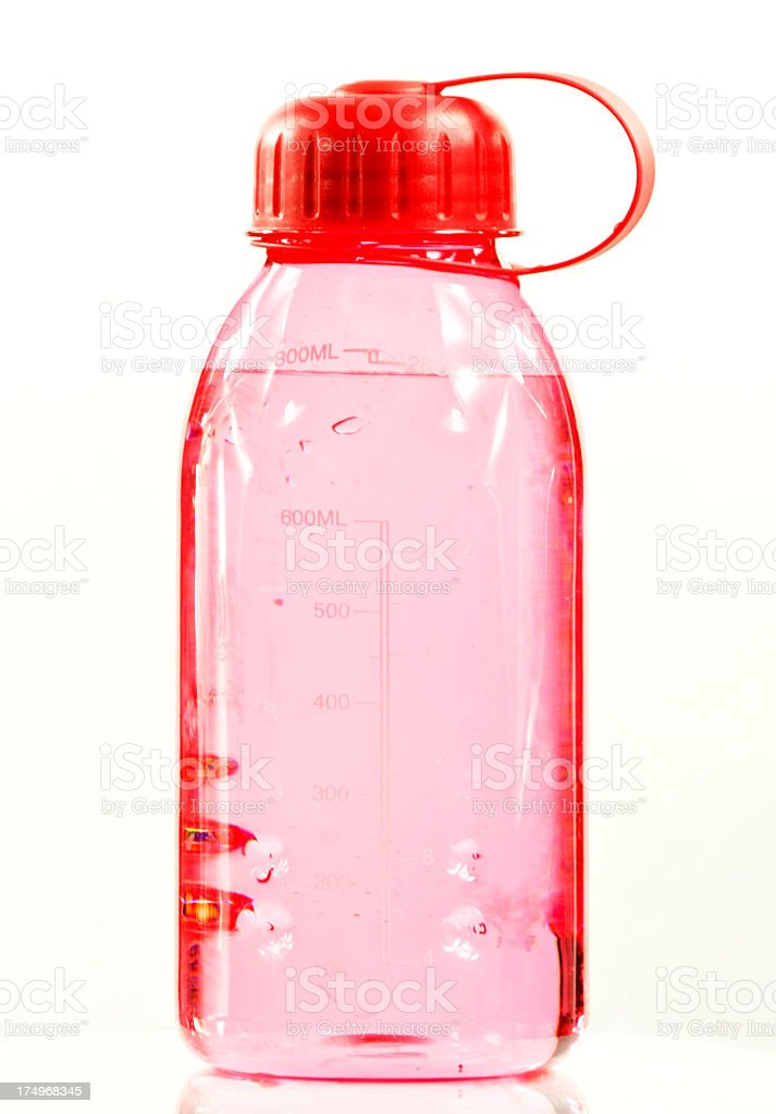 Pink Water Bottle stock photo
