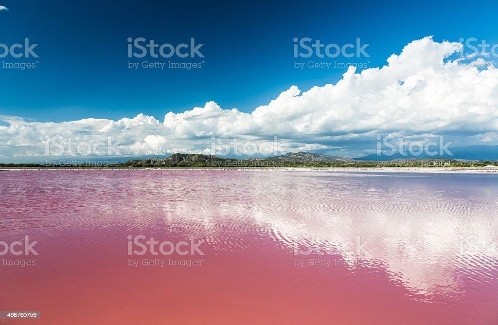 Pink water salt lake in Dominican Republic stock photo